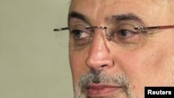 Iranian Foreign Minister Ali Akbar Salehi (file photo)