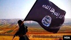 بیشترین جنگجویان خارجی به خاطر پیوستن با داعش و القاعده کشور های شان را ترک می کنند