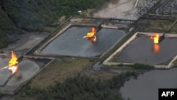 FILE - A gas flare at Shell Cawtharine Channel, Nembe Creek in the Niger Delta.