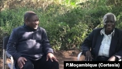 Nyusi e Dlhakama encontraram-se antes do lançamento das pombas.