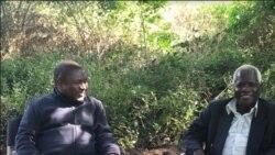 Revisão pontual da Constituição moçambicana em risco