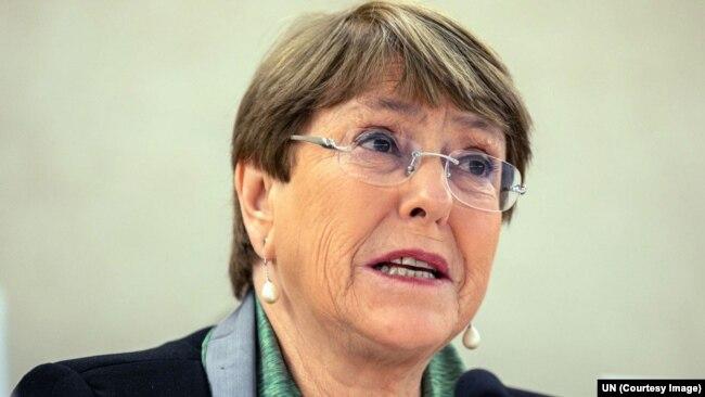联合国人权事务高级专员巴切莱特