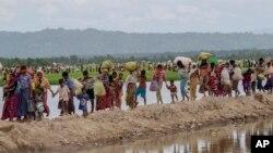 방글라데시 국경을 넘은 미얀마의 소수민족 로힝야족 난민들이 야외에서 4일을 보낸 후에야 방글라데시 당국의 허가를 받고 팔롱칼리 난민캠프로 이동하고 있다.