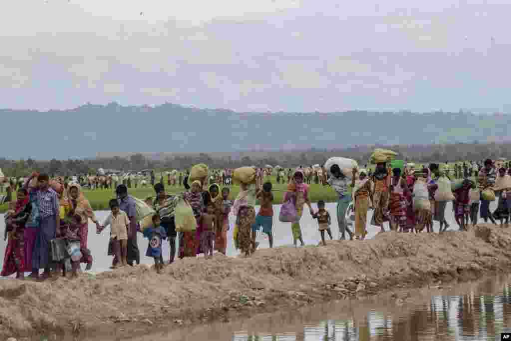 تصویری از آوارگان مسلمان روهینگیا که پس از پیودن راهی طولانی سرانجام به کمپ پناهجویان در بنگلادش رسیدند.