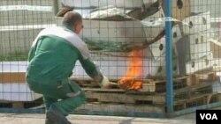 آتش زدن گلهای وارداتی از هالند در روسیه