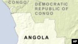 """""""Capoeira"""" Veio de Angola"""