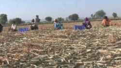 India Seeks to Balance Growth, Landowners' Rights
