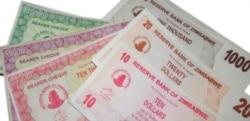 Zanu PF Activist And Economist Discuss Role of Politicians in Fiscal Matters