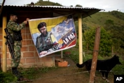 "FILE - Orlando, a rebel fighter for the 36th Front of the Revolutionary Armed Forces of Colombia, or FARC, hangs a banner featuring the late rebel leader Alfonso Cano with a message that reads in Spanish: ""Our dream is peace with social justice."""