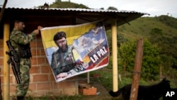 "FILE - Orlando, a fighter with the Revolutionary Armed Forces of Colombia, or FARC, hangs a banner featuring the late rebel leader Alfonso Cano with a message that reads in Spanish: ""Our dream is peace with social justice,"" in their camp in Antioquia state, Colombia."