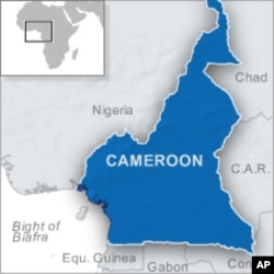 Cameroon-Nigeria Border Demarcation Due to be Finished Next Year