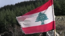 American Aid Helps Lebanon Replant Its Cedar Forests