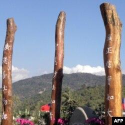 台风漂流浮木成为大爱园区标志