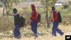 FILE: Schoolchildren return home from school after teachers boycotted their lessons, in the capital following a job boycott started via social media platforms, in Harare, Wednesday, July,6, 2016.