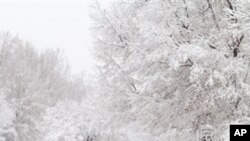 Sniježna mećava zamela američki sjeveroistok