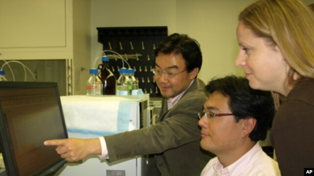 Researchers (from left) Shin-ichiro Imai, Jun Yoshino and Kathryn Mills showed that a natural compound, NMN, helps treat symptoms of diabetes in mice.