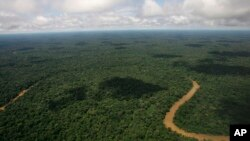 El parque amazónico Yasuní, con casi un millón de hectáreas, está ubicado en la oriental provincia de Orellana, limítrofe con Perú.