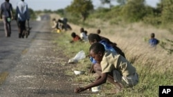 FILE - In this Dec. 14, 2008 file photo, children and their parents pick corn kernels spilled on the roadside by trucks ferrying corn imported from South Africa, in Masvingo 239 kilometers (148.5 miles) south of Harare. As the season of hunger and disease