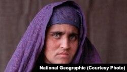 پاکستان کې دکوايفو داندراج قومي ادارې(نادرا) تيرکال شربت بي بي او دهغې دوو ځامنو ته جاري کى شوي پاکستاني شناختي کارډونه منسوخ کړي وؤ.