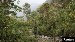 Le parc des Virunga en RDC.
