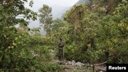 Le parc national Virunga