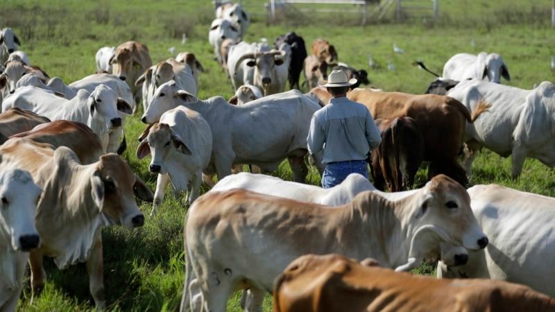 Američki rančeri u borbi klimatskih promena