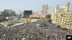The crowd gathers in Tahrir, or Liberation, Square in Cairo, Egypt, February 1, 2011