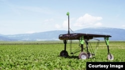In this file photo, ecoRobotix demonstrates its 'smart farm' technology, which uses artificial intelligence to identify weeds and precisely deliver herbicide to kill them. (ecoRobotix)
