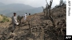 Pakistan: 3 chỉ huy hàng đầu của Taliban đã bị hạ sát