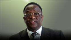 Report on Zanu PF and VP Mnangagwa Filed By Gibbs Dube