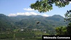 Salah satu perkebunan kopi di Lembah Orosi di Costa Rica, yang juga menjadi tempat tujuan pariwisata.