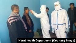 افغانستان کې د کرونا ویروس مثبتې پېښې ۷۱۴ تنه ورسېدې