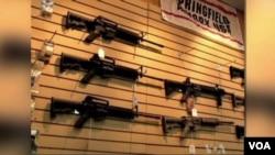 枪支控制立法是今年美国会最有争议议题之一