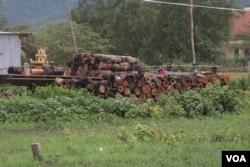 A log pile sits in the yard of Kea Teav's neighbor house in Krakor district, Pursat province, Cambodia, August 5, 2020. (Sun Narin/VOA Khmer).