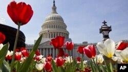 Congresso dos Estados Unidos