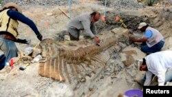Находка палеонтологов в штате Коауила в Мексике. 31 июля 2013 г.