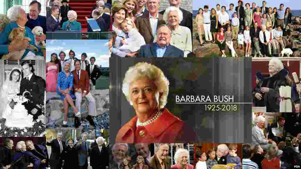 广受尊敬的前美国第一夫人芭芭拉·布什(1925-2018)一生中多幅照片的集成。她在2018年4月17日去世,享年92岁。她是美国第41任总统乔治·H·W·布什(又称老布什)的夫人,也是美国第43任总统乔治·W·布什(又称小布什)的母亲。