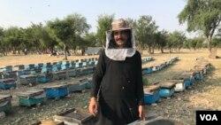 افغانستان سے پاکستان نقل مکانی کرنے والے افغان مہاجرین کو اقوام متحدہ کے ادارہ برائے مہاجرین نے مگس بانی کی تربیت دی۔