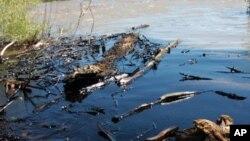 Излив на нафта во Монтана