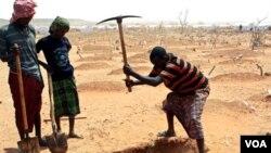A principios de octubre (2011), el director de USAID anunció una ayuda de $127 millones de dólares para aliviar la hambruna en Etiopía.