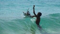 Ambientalistas criticam delapidação de recursos moçambicanos