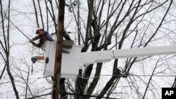 Снегот претежок за гранките: поправка на оштетената електрична мрежа во Таусон, сојузната држава Мериленд