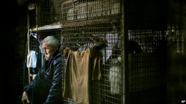 Rumah bagi warga Hong Kong Yeung Ying Biu, 77, adalah kandang besi berukuran 1,5 meter persegi. (AP/Vincent Yu)