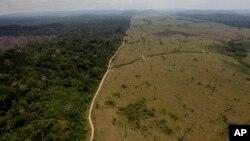 جنگلزدایی در برزیل