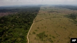 FILE - In this Sept. 15, 2009 file photo, a deforested area is seen near Novo Progresso in Brazil's northern state of Para.