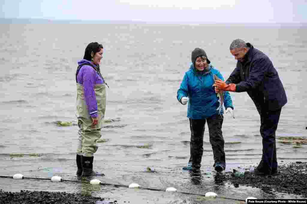 Le président a un saumon dans ses pieds, lors d'une visite en Alaska, le 2 septembre 2015.