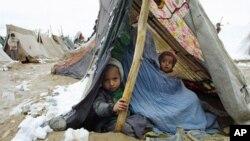 افغان ماشومان د یخنۍ له لاسه مړه شوي دي.