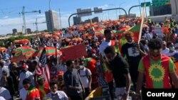 Hiriira mormii Oromoo biyya alaa Adoolessa 2020