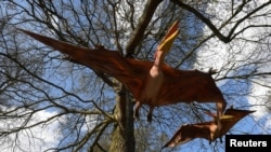 Animatronic life-size pterosaurs are seen ahead of an interactive exhibition, Jurassic Kingdom, at Osterley Park in west London, Britain, March 31, 2017.