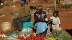 ZimPlus: Chombo Says Army Will Evict Vendors in Cities, Monday, June 1, 2015